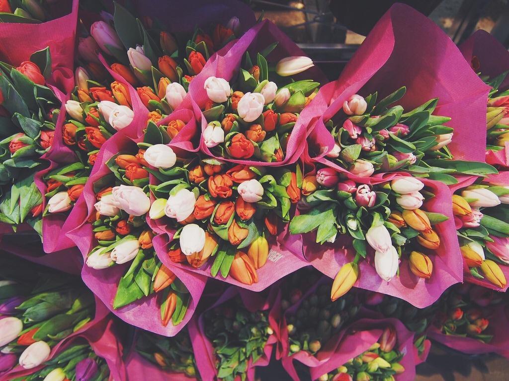 flowers-1245820_1920.jpeg