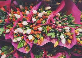 Kwiaty-BIG.jpeg