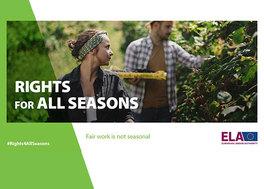 Prawa-pracowników-sezonowych.jpeg